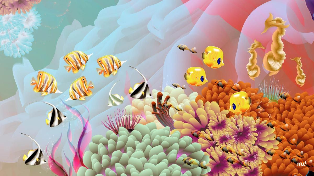 seaflower_coral_reefs_mu_studio_sebastian_murra_corales_san_andres_detail_1_bottom_web