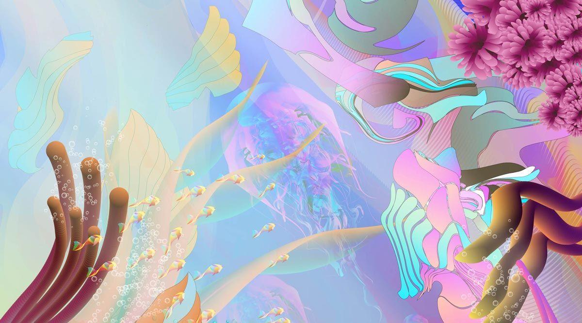 seaflower_coral_reefs_mu_studio_sebastian_murra_corales_san_andres_detail_3_up_web