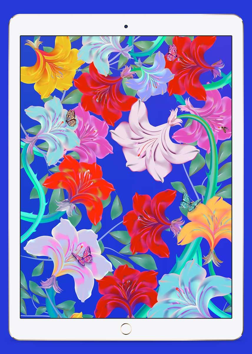 the-garden-mu-studio-sebastian-murra-vector-illustration-abstract-ipad
